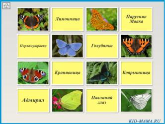 Бабочки и их гусеницы. Презентация и игра.