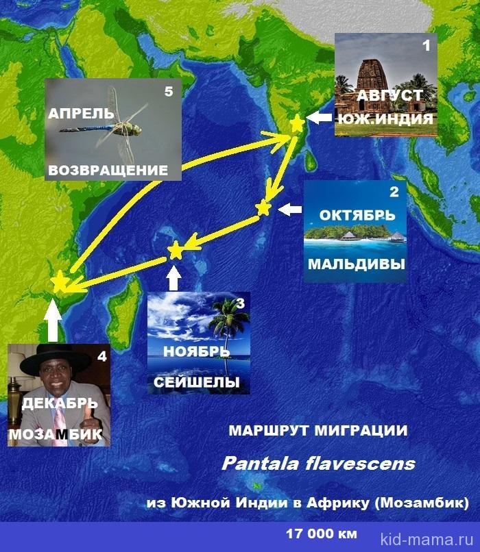 ИНДИЙСКИЙ ОКЕАН-2-1