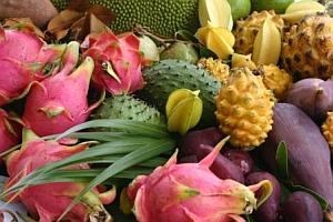 Экзотические фрукты-1